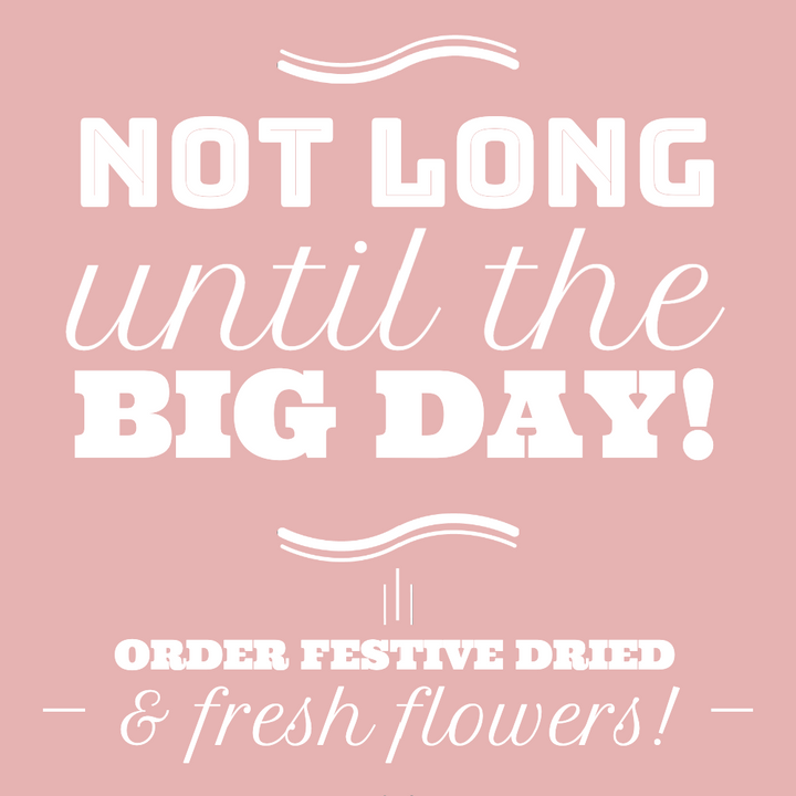 Last Festive Flower Shipping Date 22nd December! Don't Miss Out!