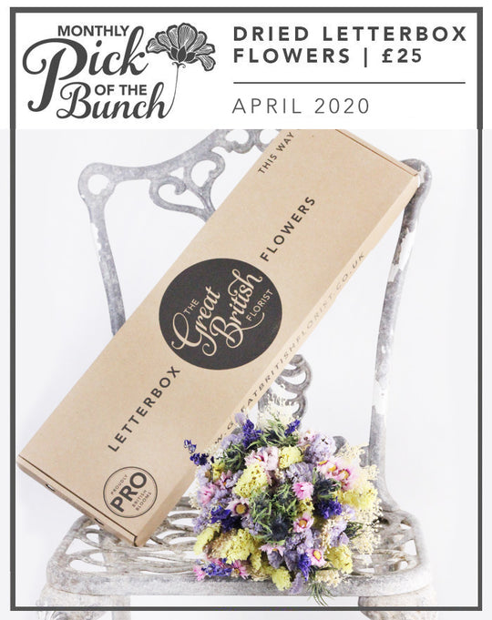 Monthly Pick of the Bunch Dried Letterbox Flowers -April 2020