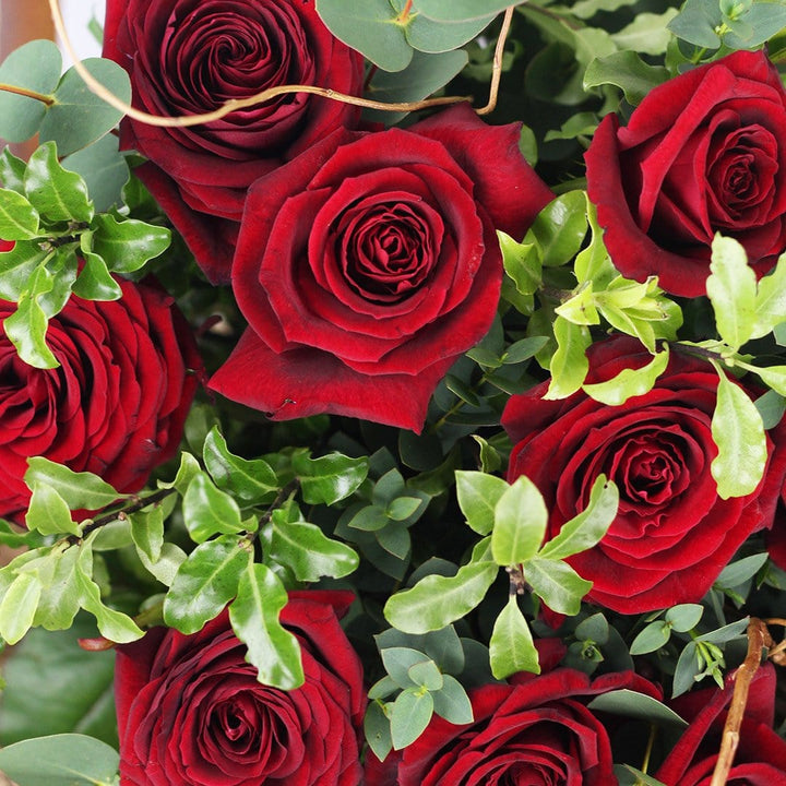 Your Loved one will adore our Ravishing Roses this Valentine's Day!