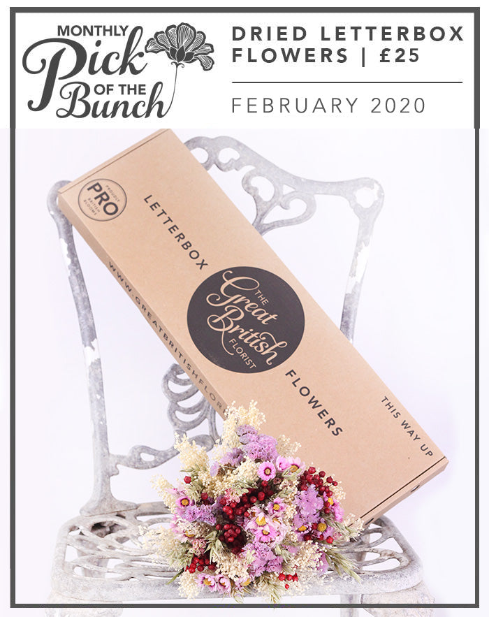 Monthly Pick of the Bunch Dried Letterbox Flowers - February 2020