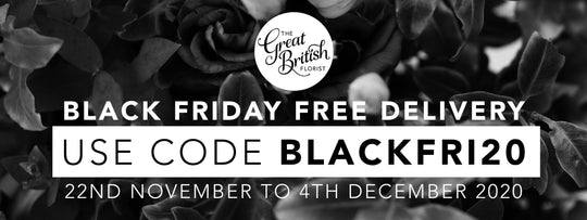 In case you missed it: We've got FREE DELIVERY on EVERYTHING until 4th December!