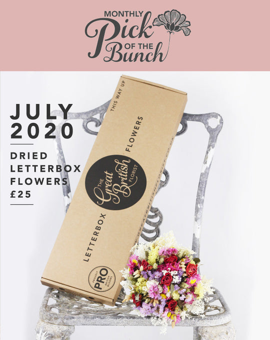 Monthly Pick of the Bunch Dried Letterbox Flowers - July 2020