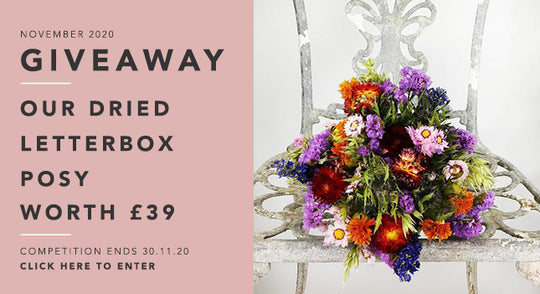 GBF Giveaway November 2020: Our Dried Letterbox Posy worth £25!