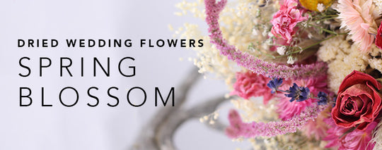 Our Spring Blossom Dried Wedding Flower Range