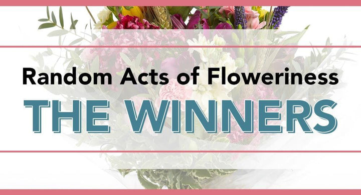 Random Act of Floweriness Winner #9 - Jane Rowe