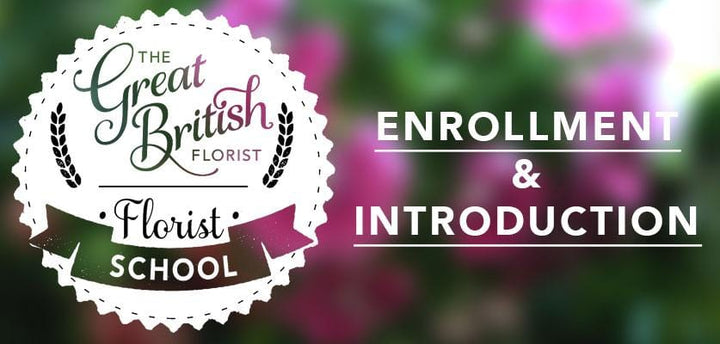 Florist School - Class 0 - Enrollment & Introduction
