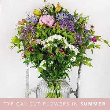 Seasonal Box of Cut Flowers - NO LILIES