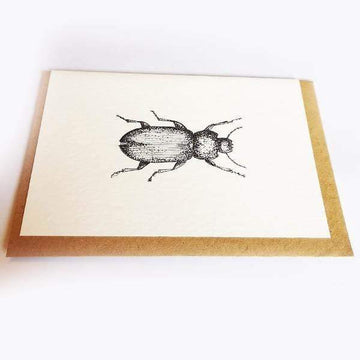 Beetle Gift Card