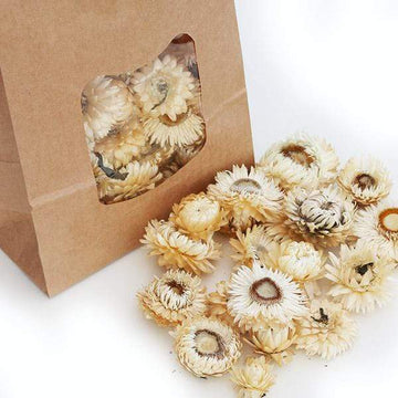 Helichrysum Heads (White)