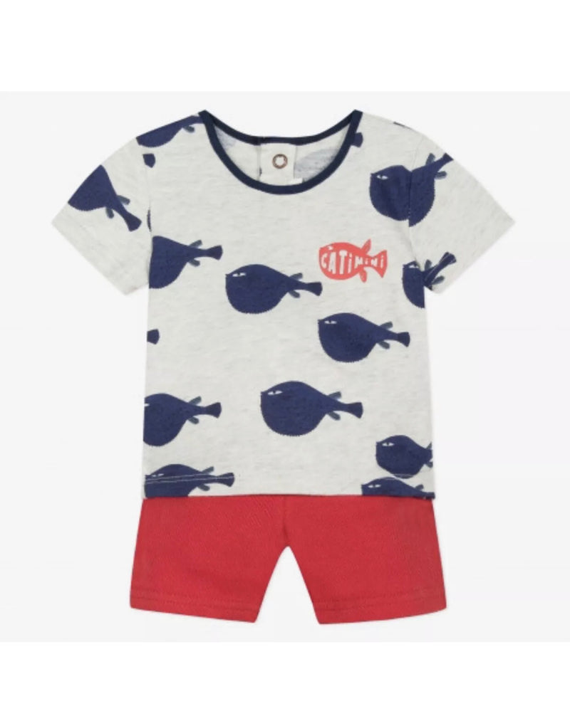 CATIMINI Baby Boys Top and Matching Shorts