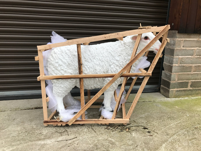 Resin Sheep