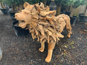 Exceptional 7ft 6 Driftwood Lion Statue
