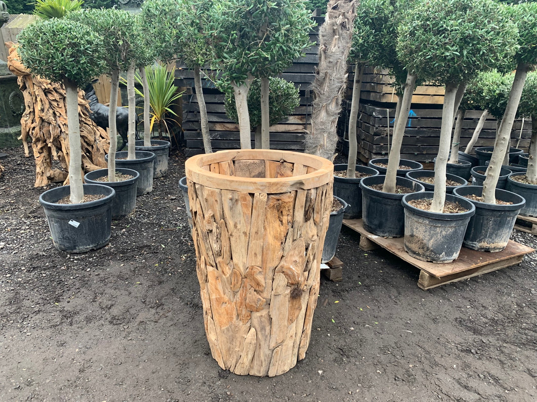 Exceptional Large Driftwood Planter Vase