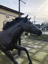 Load image into Gallery viewer, Life Size Bronze Horse Statue