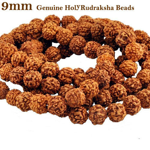 Five Faced Mukhi Natural & Energized 9mm Size Rudraksha Rosary/ Mala (108+1 Beads)