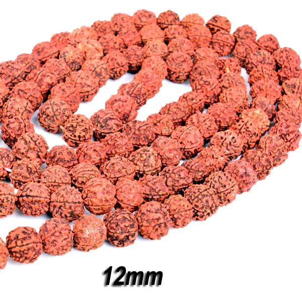 Five Faced Mukhi Natural & Energized 12mm Size Rudraksha Rosary/ Mala (108+1 Beads)