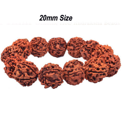 Five Faced Mukhi Natural & Energized 20mm Size Rudraksha Rosary/ Mala (108+1 Beads)