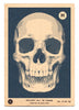 Skulls A to Z - Bruise Blue