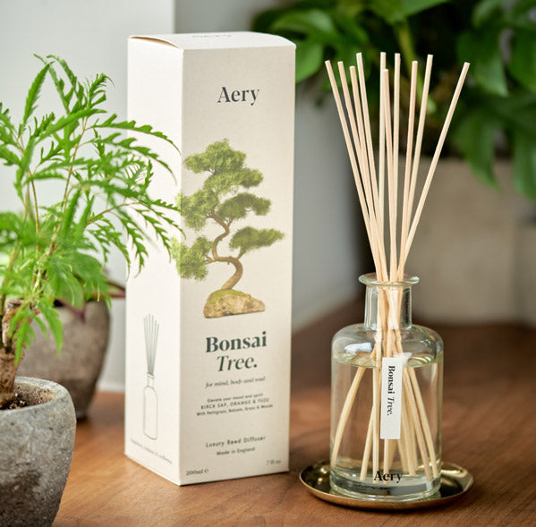 Aery Living Bonsai Tree Reed Diffuser on Counter Top Next To Plants