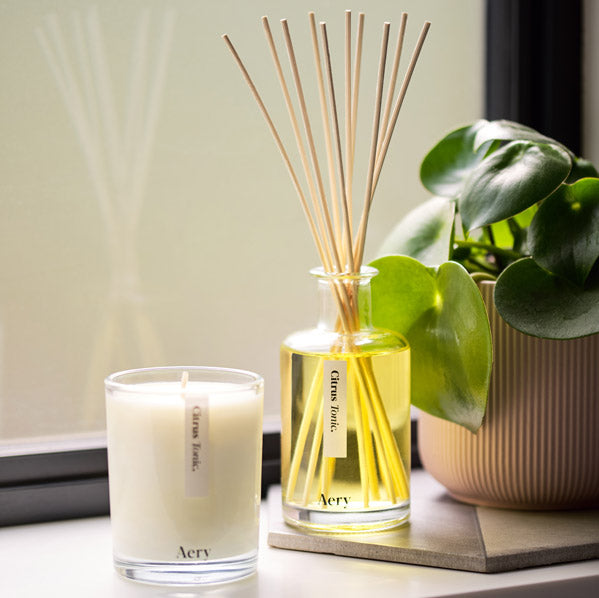 Aery Living Reed Diffuser and Candle on A Window Cill Next To Plant
