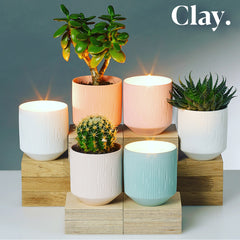Aery Living Clay Collection Scented Candles