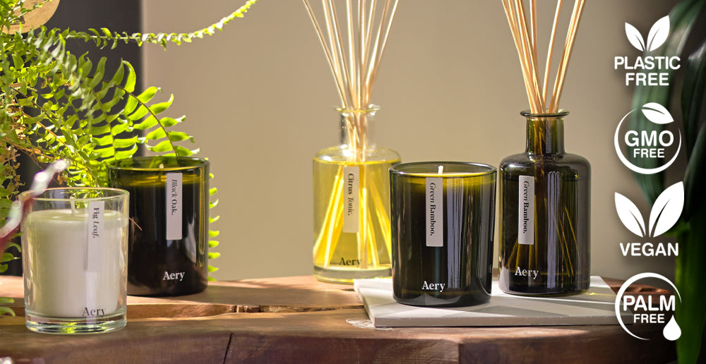Aery Glass candles and diffusers on a wooden shelf with house plants