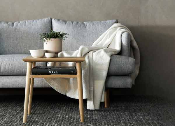 living room set up with sofa blanket and small coffee table with decorative plant