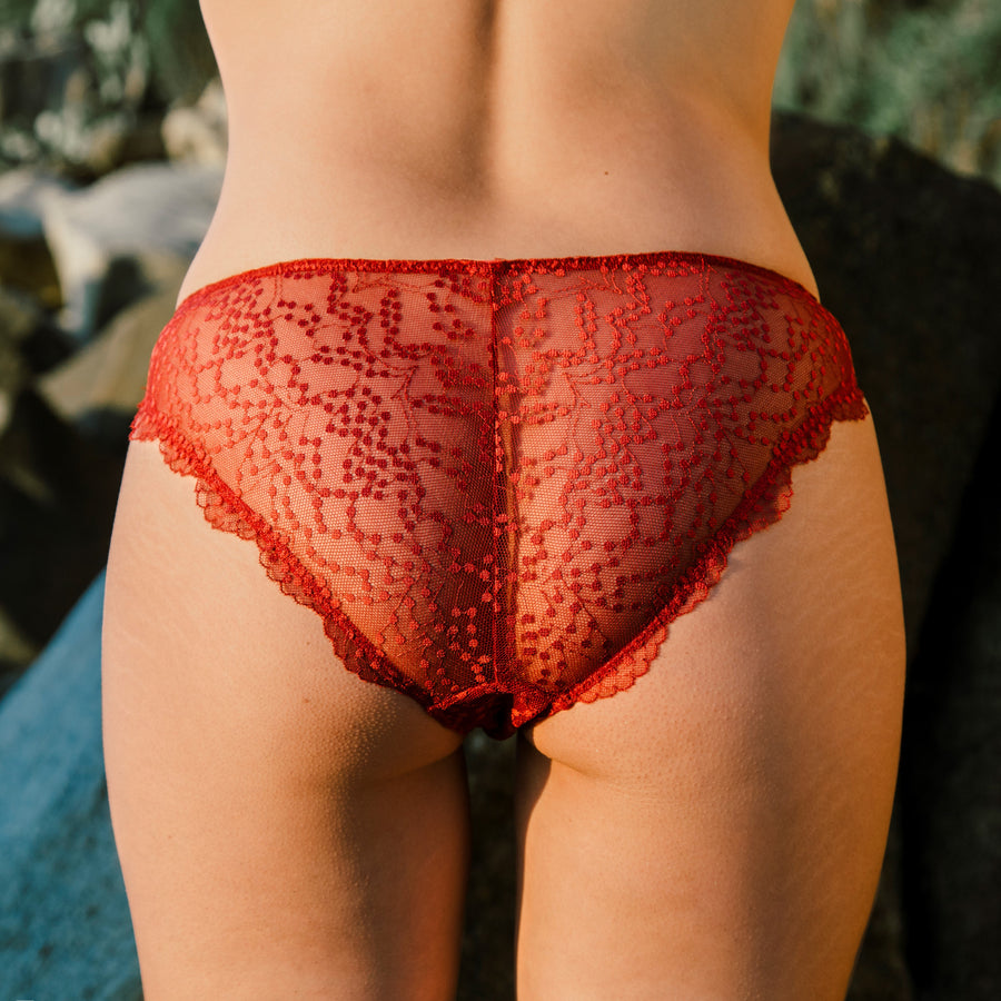 plumetis lace brief