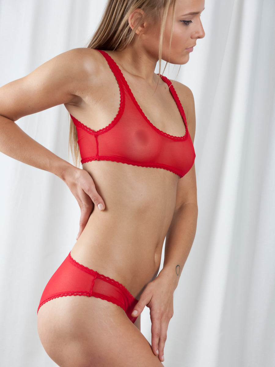 picot trimmed stretch tulle brief
