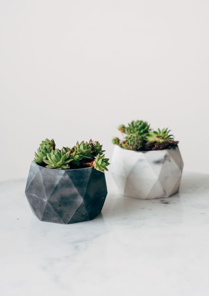 Geometric Marbled Pastel Concrete Pots - Monochrome Collection