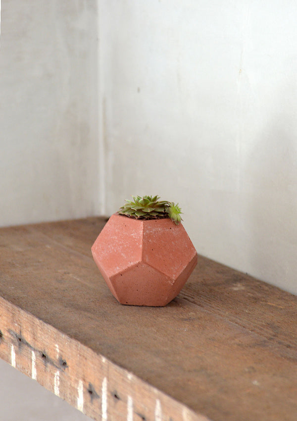 Concrete Decagon Pot - Terracotta