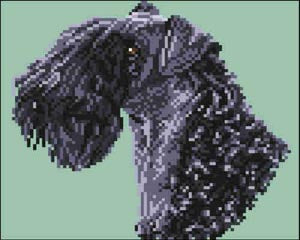 Brenda Franklin Designs, Kerry Blue Terrier (Head), Needles and Things