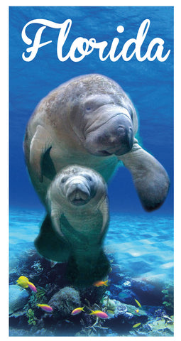 12 Florida Manatees Beach Towel 30 x 60 #0171-FL
