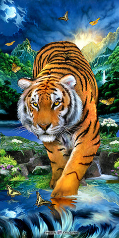 24 Tiger in Water Stream Velour Towel 30 x 60 Inch Towels #BT6902