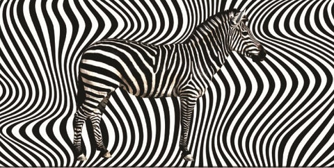 24 Zebra Artwork Velour Beach Towels 30 x 60 Inch #BT6821