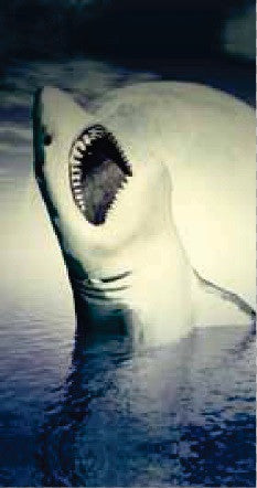 24 Attacking Shark with Moon Velour Beach Towel 30 x 60 Inch #BT6872