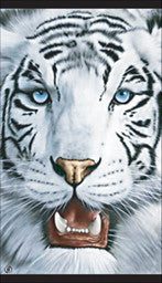 12 White Tiger Velour Beach Towels 40 x 70 Inches #197