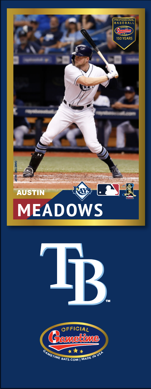 Austin Meadows Photo Bat | MLB Collection