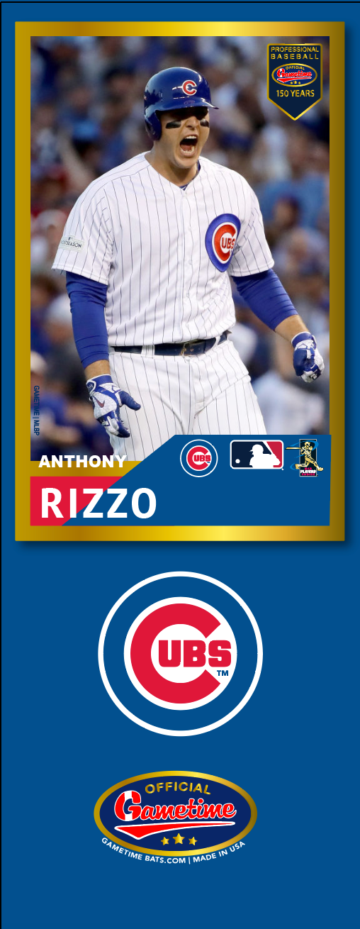 Anthony Rizzo Photo Bat | MLB Collection