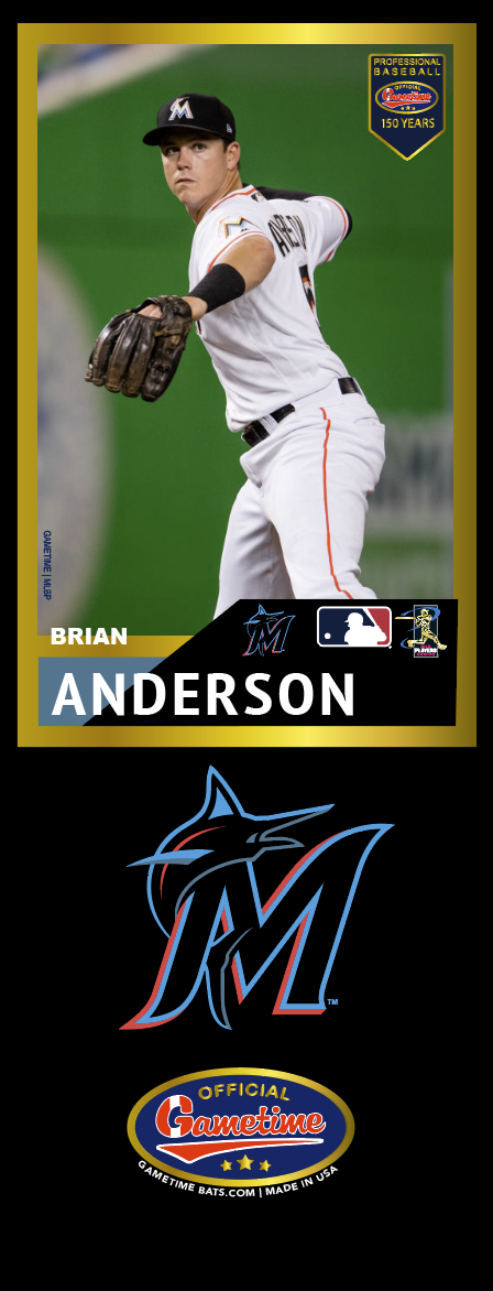 Brian Anderson Photo Bat | MLB Collection