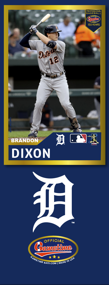 Brandon Dixon Photo Bat | MLB Collection