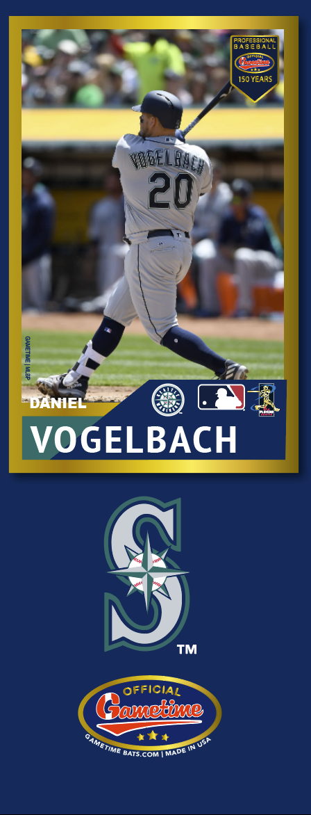 Daniel Vogelbach Photo Bat | MLB Collection
