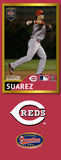 Eugenio Suarez Photo Bat | MLB Collection