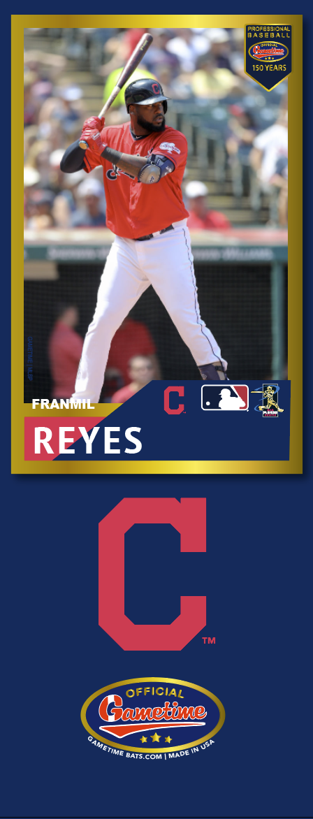 Franmil Reyes Photo Bat | MLB Collection