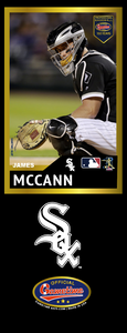 James McCann Photo Bat | MLB Collection