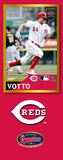Joey Votto Photo Bat | MLB Collection