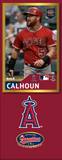 Kole Calhoun Photo Bat | MLB Collection