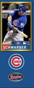 Kyle Schwarber Photo Bat | MLB Collection