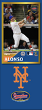 Pete Alonso Photo Bat | MLB Collection