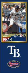 Tommy Pham Photo Bat | MLB Collection